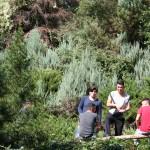 Stufenfahrt QI Erholung im park